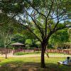 龍潭一日遊》三坑自然生態公園,野溪玩水,單車野餐,親子這樣玩
