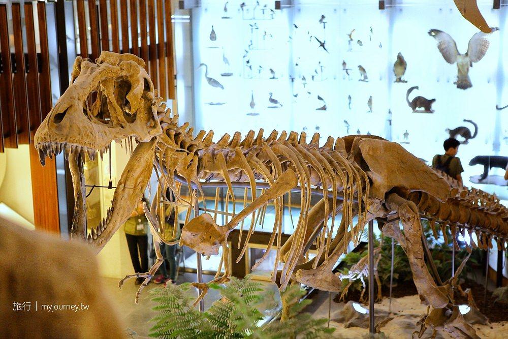 台北親子景點》土銀展示館,恐龍模型/金庫親子遊,一張門票同遊臺博館