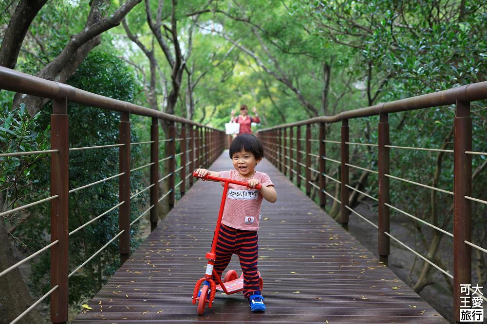 紅樹林生態步道_27