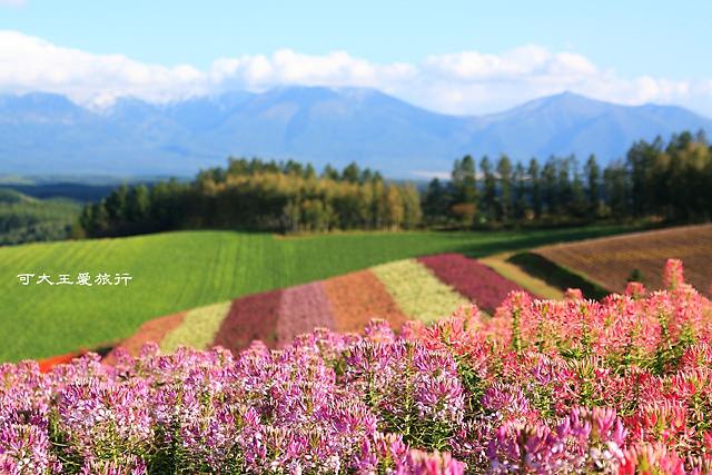Hokkaido_Schedule2.jpg