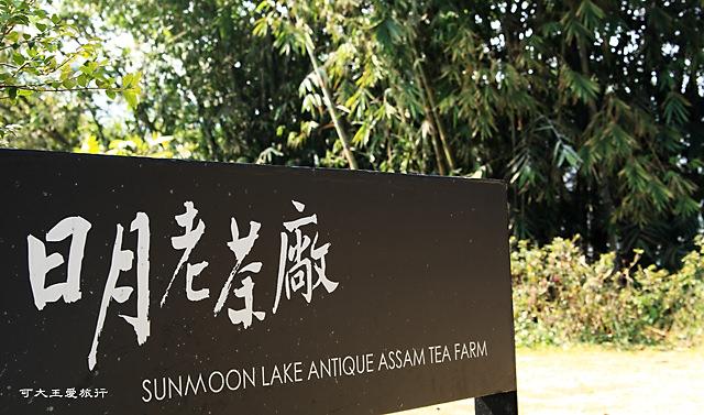 Sun Moon Tea_1