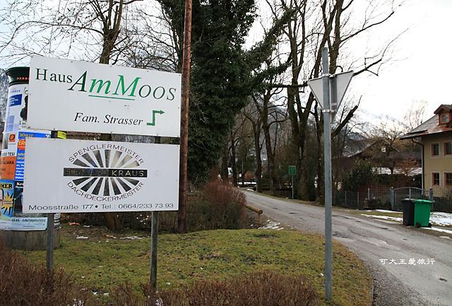 AmMoos_18.jpg